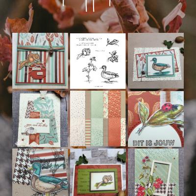 Tijd voor herfstige kaarten