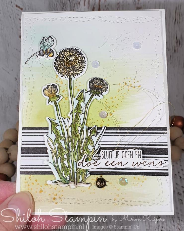 Wensbloemen bundle