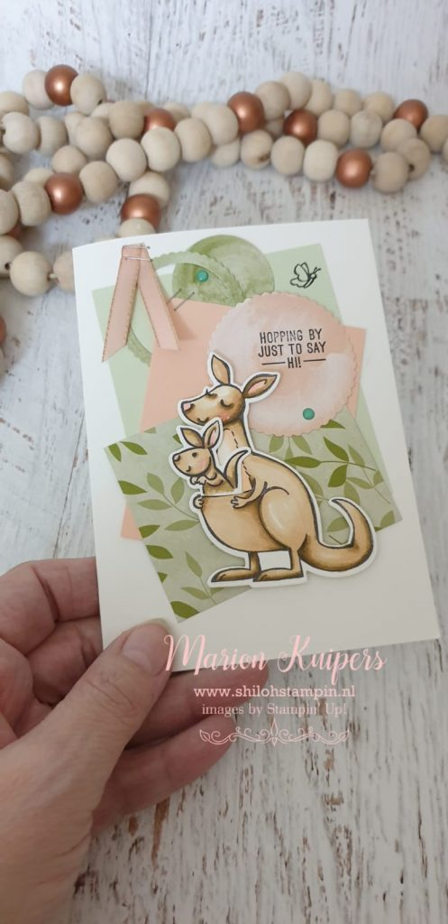 Kangaroo & Company and paper blooms design papier