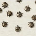 ladybug trinkets in webshop verkrijgbaar
